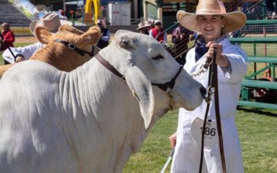 Meet Young Beef Cattle Parader Maya Threlfall (QLD)